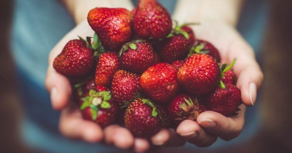 Wat je moet eten als je weer op krachten wilt komen na ziek te zijn geweest
